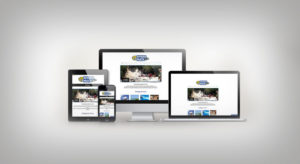 Diseño web Riviera Maya Tours